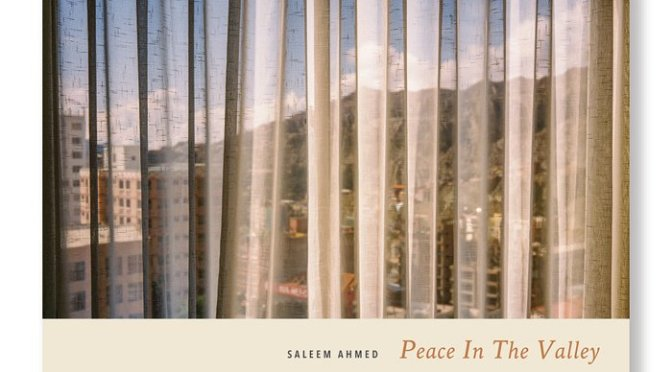 Peace in the Valley by Saleem Ahmed